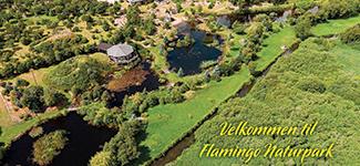 Flamingo Naturpark